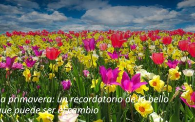 ¡¡ Bienvenida Primavera !!